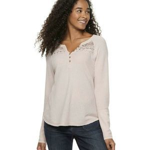 American Rag Cie Soft Lace Yoke Knitted Blouse Top